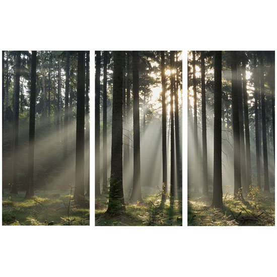 000302 Trees Triptych - What You Need To Hold A Corporate Event In A Beauty Salon To Increase Sales