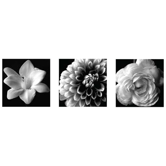 000312 BW Floral S3 - Floral Design Tips for Table Arrangements