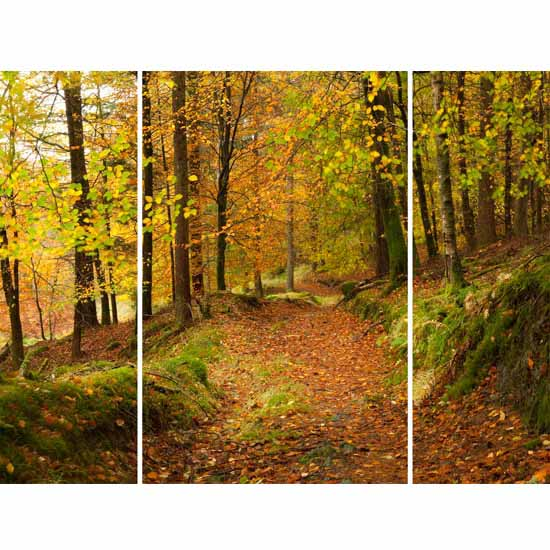 3 Panel Autumn Path Triptych Wall Art