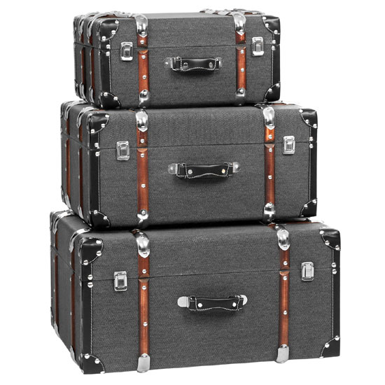 2404301 Bergman Storage Cas - 10 Creative Storage Chests For Your Home