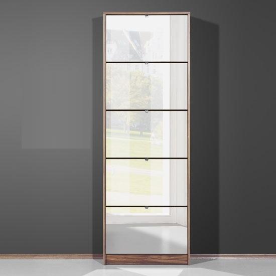 Mirrored Shoe Storage Cabinet