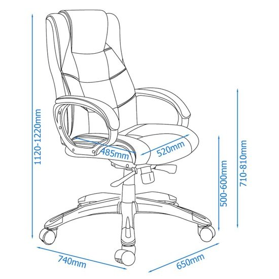 Nobbler Home And Office Executive Chair In Black_4