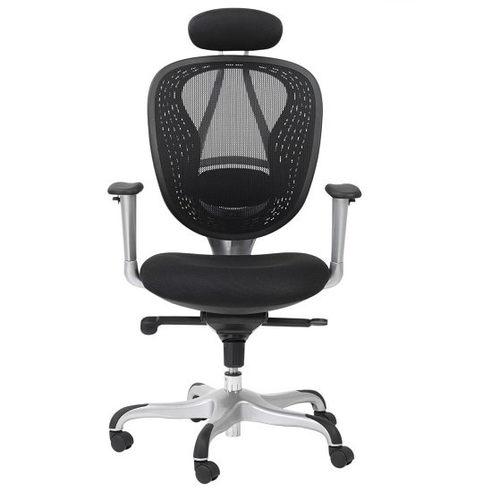 Blintz Mesh Home And Office Chair In Black Finish