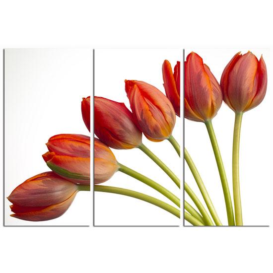 3 Panel Red Tulip Wall Art