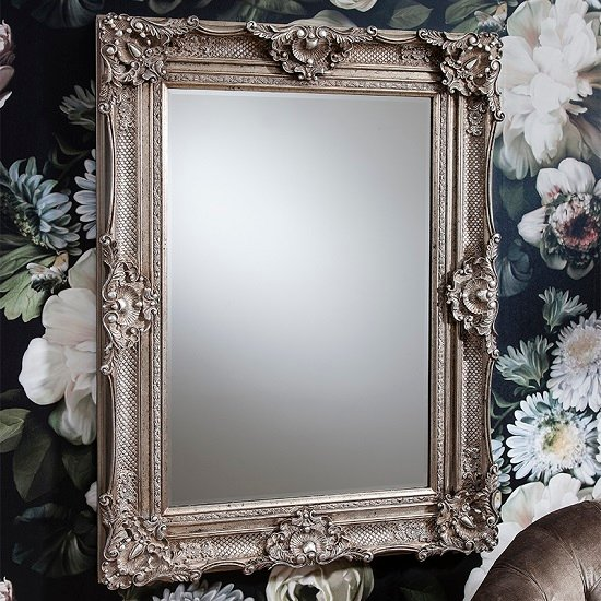 Valley Baroque Style Wall Mirror Rectangular In Antique