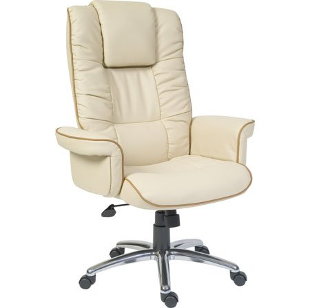 Windsor Executive Chairs - Choosing An Office Chair For Home Use: Important Aspects To Focus On