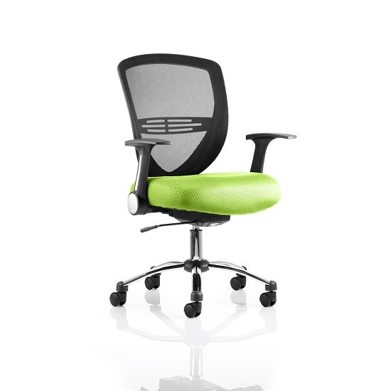 Avram Home Office Chair In Green With Castors