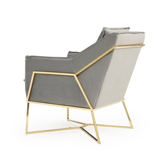 Baron Modern Accent Chair In Grey Velvet With Gold Frame_2