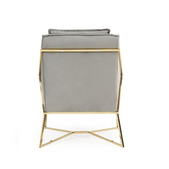 Baron Modern Accent Chair In Grey Velvet With Gold Frame_3