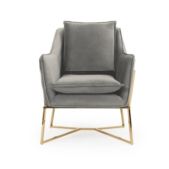 Baron Modern Accent Chair In Grey Velvet With Gold Frame_4