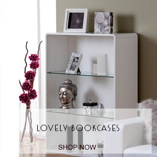 bookcases - Decorating Living Room Ideas On A Budget