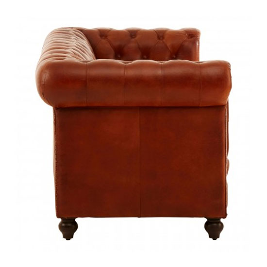 Buffaloes 3 Seater Leather Sofa In Tan_2