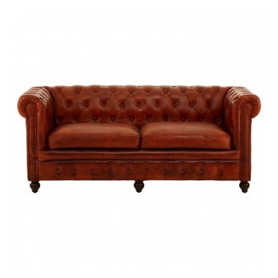 Buffaloes 3 Seater Leather Sofa In Tan