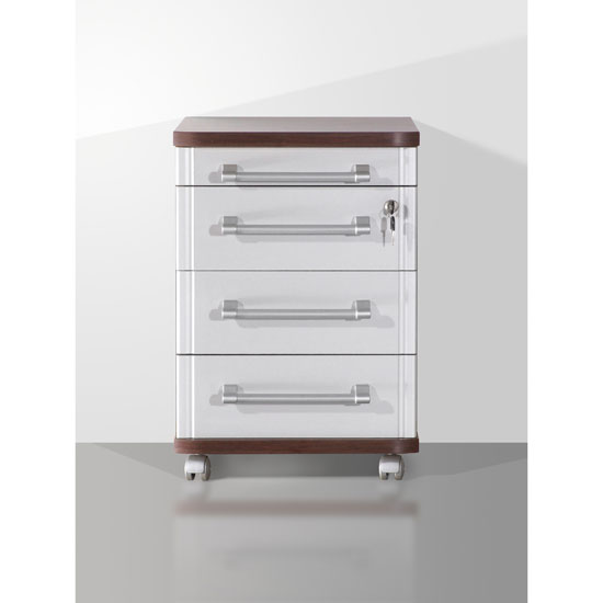 Profi Wenge Document Cabinet with Silver Front