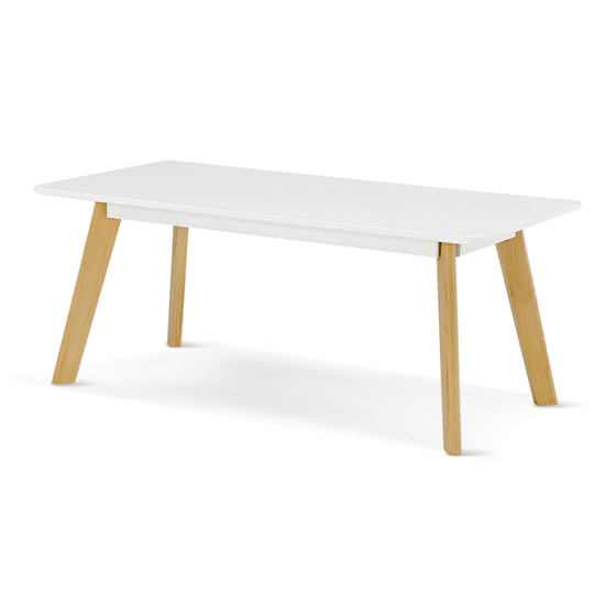 Canum Wooden Rectangular Coffee Table In White