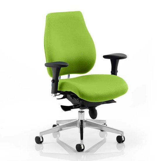 Chiro Plus Office Chair In Myrrh Green With Arms