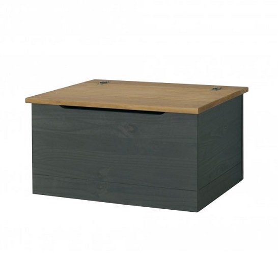 Corina Storage Trunk In Carbon Grey Finish