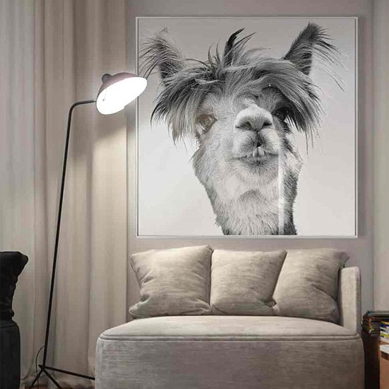 Cursa Llama Picture Glass Wall Art