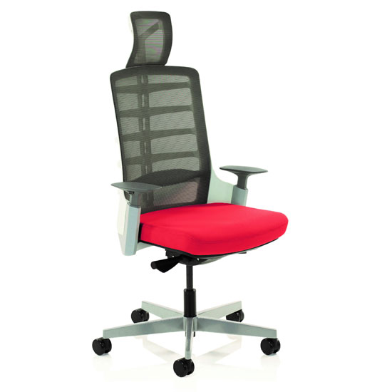 Exo Charcoal Grey Back Office Chair With Bergamot Cherry Seat