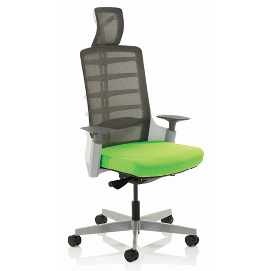 Exo Charcoal Grey Back Office Chair With Myrrh Green Seat