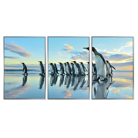 Acrylic Framed Penguin March Pictures (Set of Three)