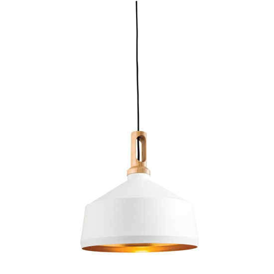 Garcia Wall Hung Pendant Light In White