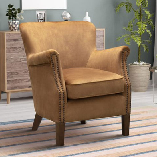 View Harlow velvet upholstered vintage armchair in caramel
