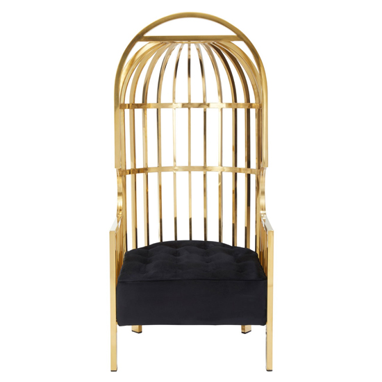 Fafnir Cage Design Occasional Chair In Gold     _2