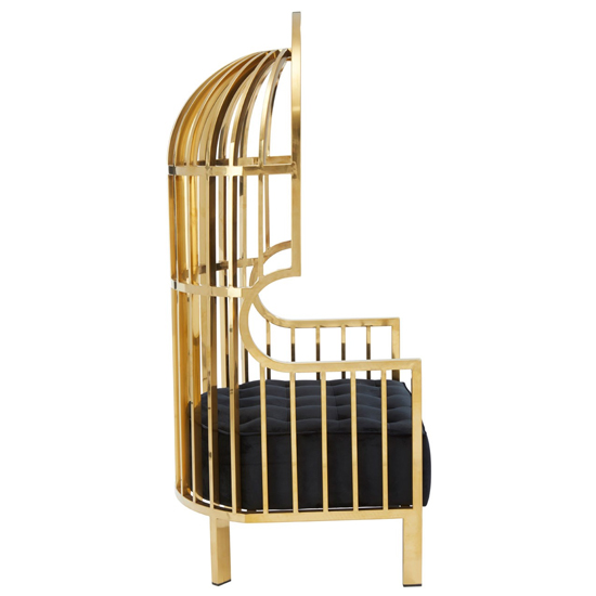 Fafnir Cage Design Occasional Chair In Gold     _3