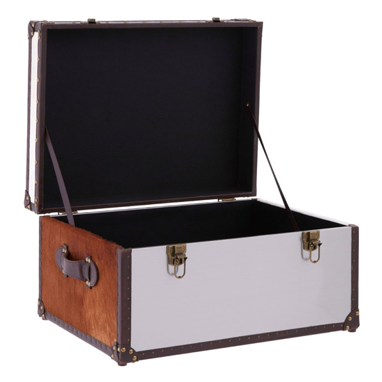 Kensick Cowhide Leather Storage Trunk In Brown And White_4