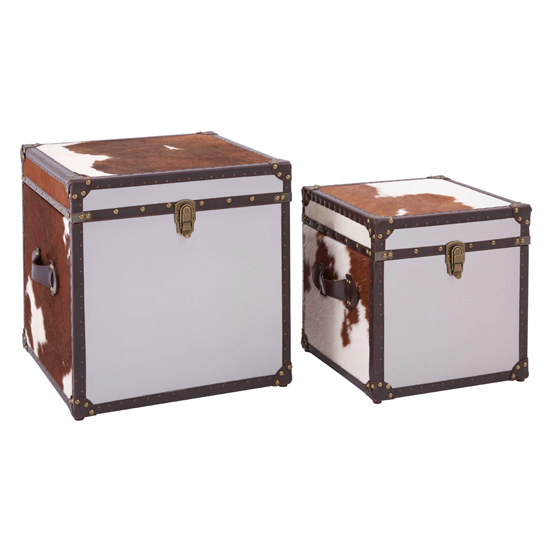 Kensick Cowhide Leather Storage Trunk Set In Brown And White