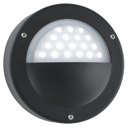 LED Outdoor Wall Light In Black With Acid Glass