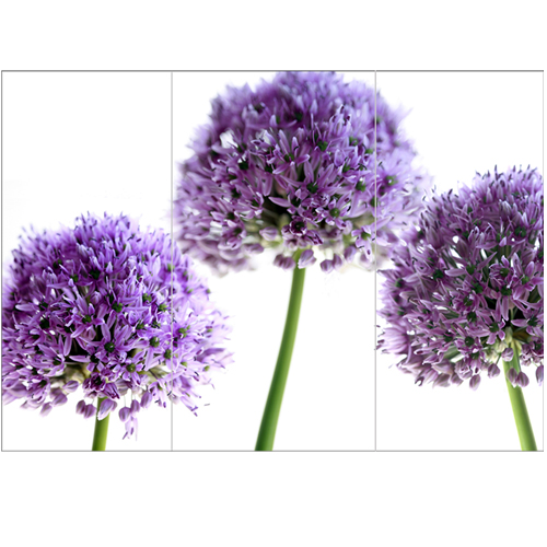 lilacalliums - Inspirational Wall Art For Office, Enhance The Look