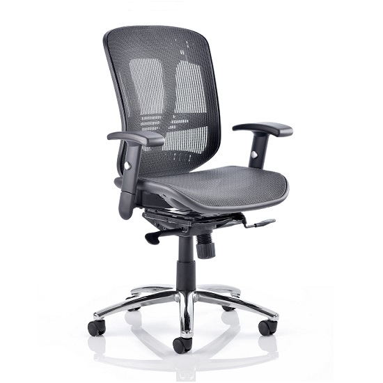 Lydock Mesh Executive Chair In Black With Adjustable Arms
