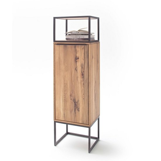 Norwich Wooden Storage Unit In Wild Oak With 1 Door