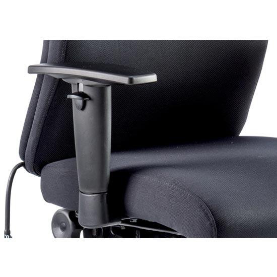 Onyx Ergo Fabric Posture Office Chair In Black With Arms_2