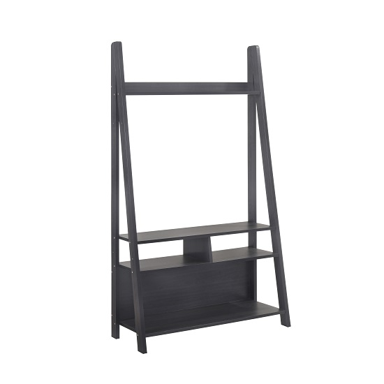 Paltrow Entertainment Unit In Black With Ladder Style