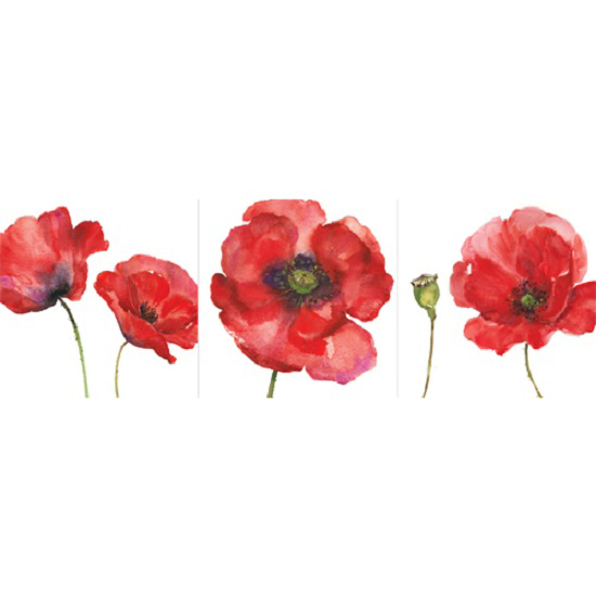 3 Piece Painted Poppies Wall Art