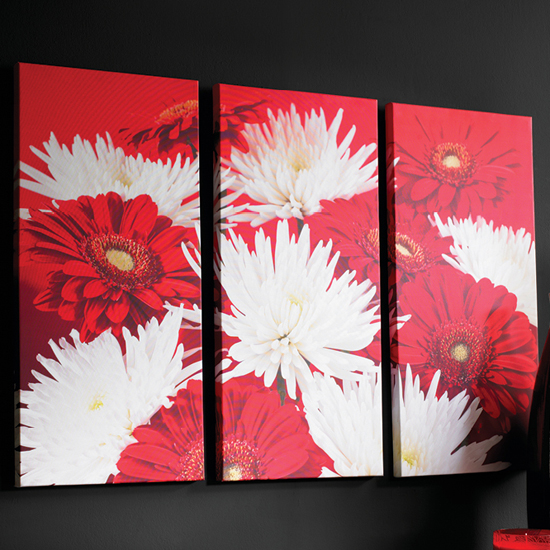 Red And White Flower Triptych Wall Art
