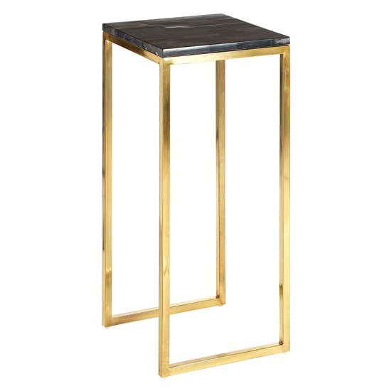 Relics Dark Petrified Wooden Side Table With Gold Frame_1