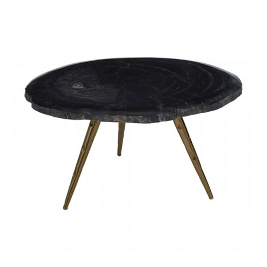 Relics Petrified Wood Top Coffee Table In Black With Steel Legs