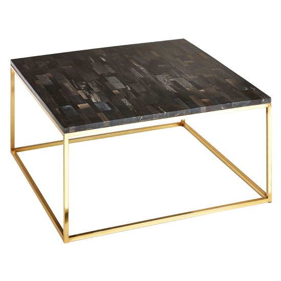 View Relics petrified wooden square coffee table with gold frame
