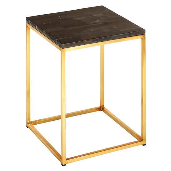 Relics Petrified Wooden Square Side Table With Gold Frame