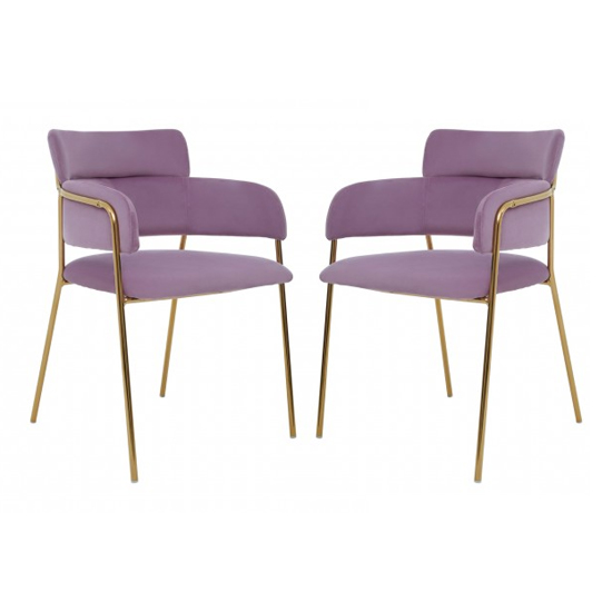 Tamzo Pink Velvet Dining Chairs And Gold Legs In Pair