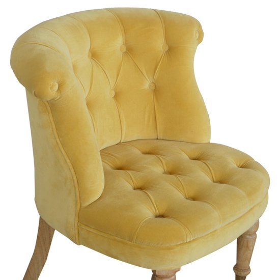 Trenton Velvet Upholstered Accent Chair In Mustard_3
