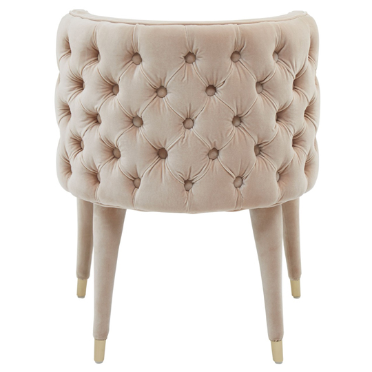 Sadalsuud Beige Velvet Feature Chair With Wooden Legs    _4