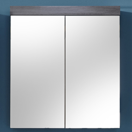 Wildon Bathroom 2 Doors Mirroed Cabinet In Smoky Silver