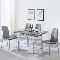 Paris Extendable Glass Dining Table In Grey And 4 Opal Chairs