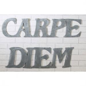 Wall Decoration Carpe Diem Metal Grey Set Of 2