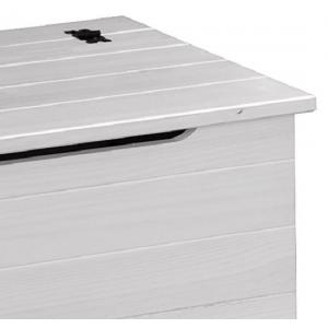 Coroner Blanket Box In White Washed With Storage_6